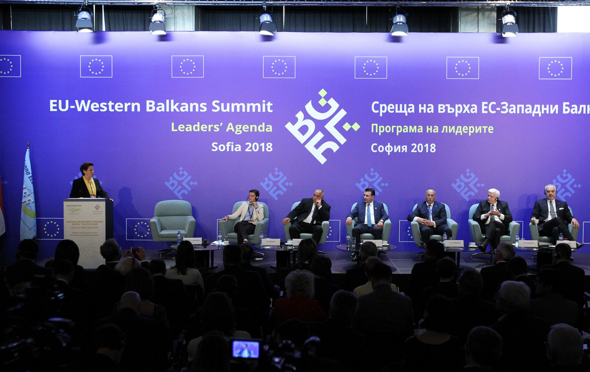 Vienna Economic Forum: Business should lead the politics of